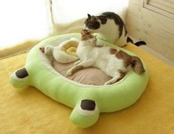 Делаем лежак для кошки своими руками ( фото) Кот Pinterest 48