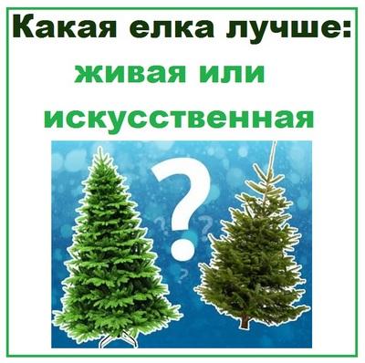 Какая елка лучше живая или искусственная