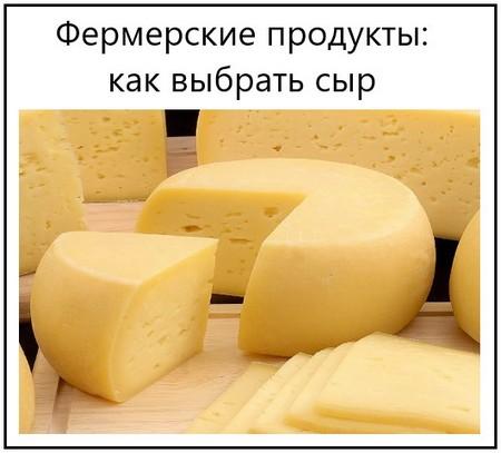 Фермерские продукты как выбрать сыр